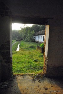 view through the damaged window space